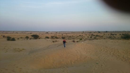 Royal Desert Camp Jaisalmer: DSC_1040_large.jpg