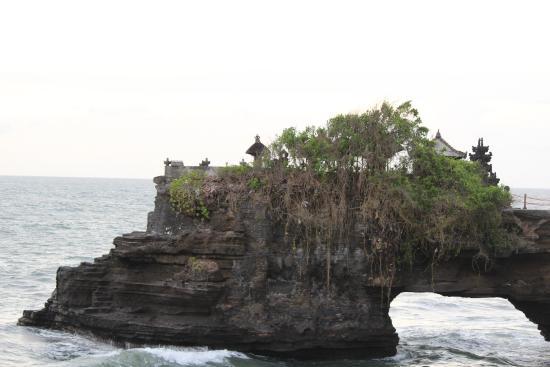 Wahana Bali Tours