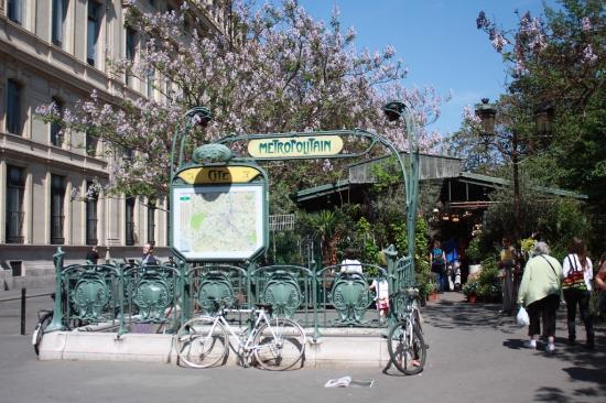 Station de m tro cit et march aux fleurs picture for Ligne de fleurs