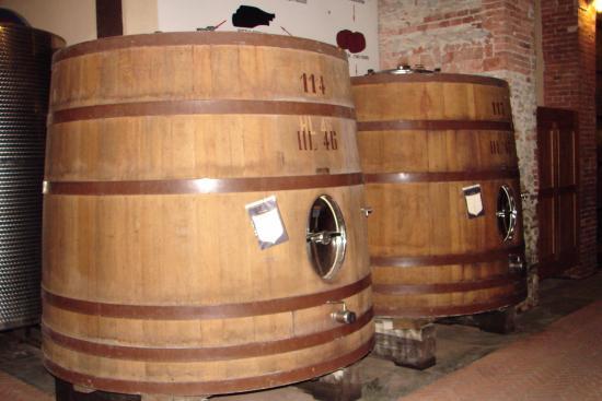 Fontanafredda: Barris com o vinho envelhecendo
