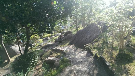 View Rock Resort : IMAG0213_large.jpg