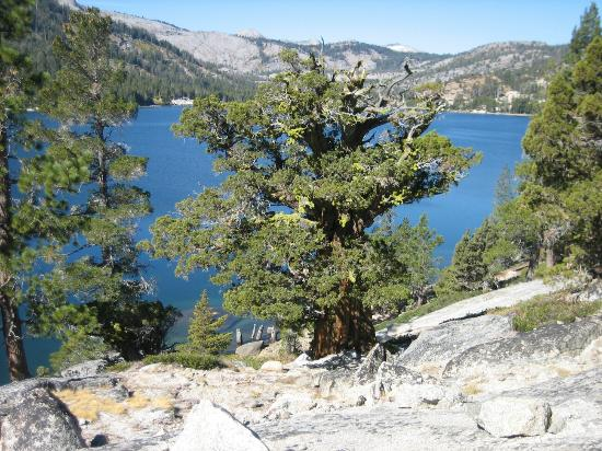 Echo Lakes Hiking Trail: Views of the lakes from the hiking trail