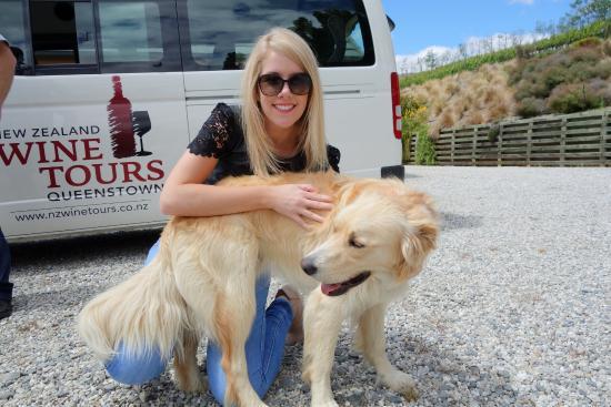 ควีนส์ทาวน์, นิวซีแลนด์: Bannock Brae's Baxter with New Zealand Wine tours