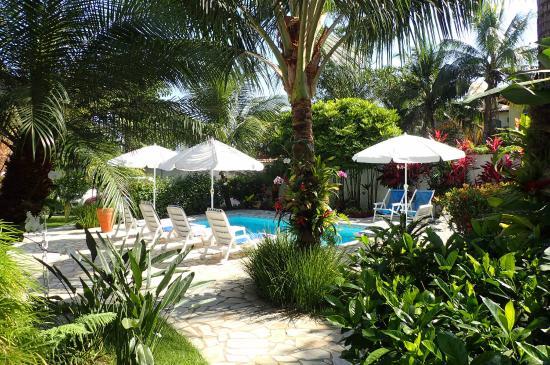 Jardim e área de piscina (165517342)