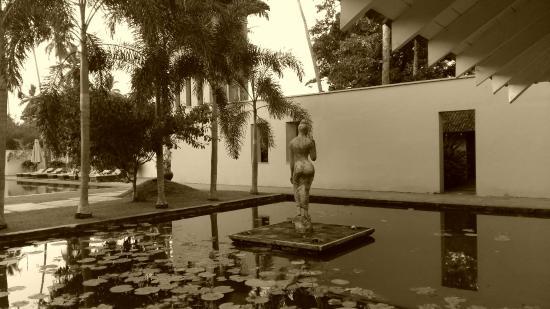Angulugaha, Sri Lanka: Dubu