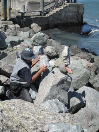 Bill Dan Balancing Rocks Foto