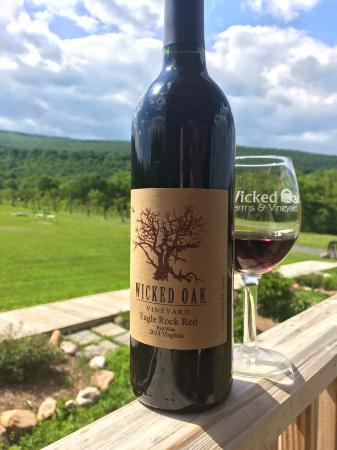 Wicked Oak farms and Vineyard-billede