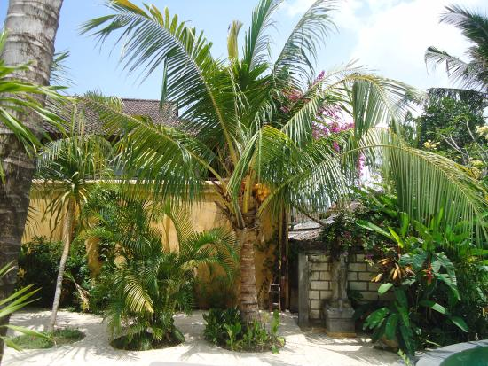 Jeje Resort Bali: garden
