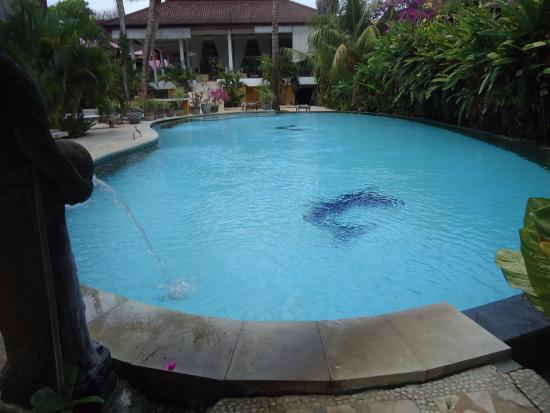 Jeje Resort Bali: pool