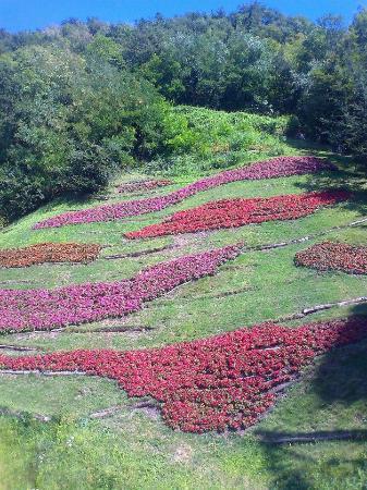 Perfect i giardini di castel aiuole fiorite with aiuole for Aiuole fiorite immagini
