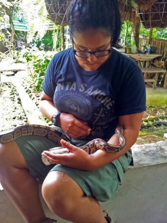 El Serpentario: Serpentario Valle de Antón