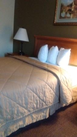 Rodeway Inn: Bed with the smallest pillows I have ever seen in a Hotel