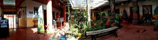 Hostal Luna Nueva: garden view