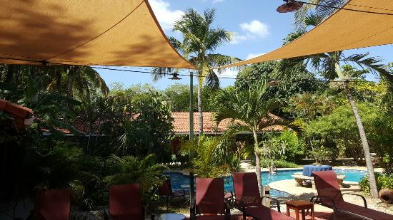 Hotel Bula Bula: 20151226_121405_large.jpg