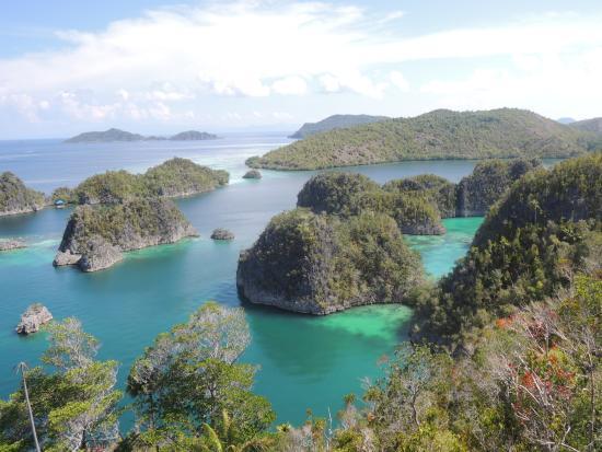 R ckzugsoase picture of sorido bay resort raja ampat tripadvisor - Raja ampat dive resort reviews ...