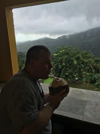 Rio Grande, Porto Rico: LCDR Joe Byers El Yunque Puerto Rico Coconut