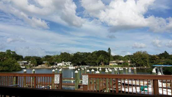 Phillippi Creek Village Restaurant Oyster Bar Sarasota Fl
