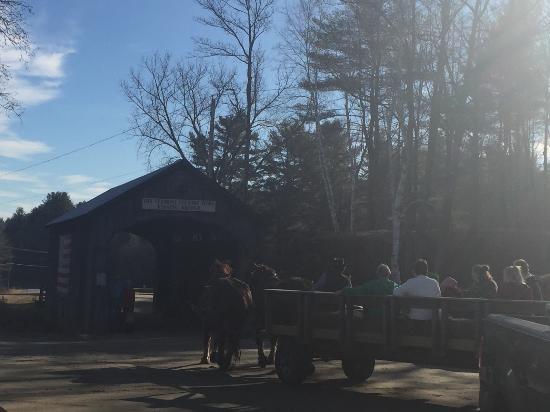 Rockingham, VT: horse drawn wagon ride