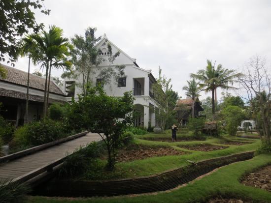 Saraphi, Tayland: Beautiful