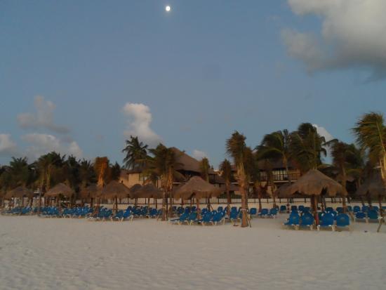 Zona de hamacas picture of allegro playacar playa del - Hamacas de playa ...