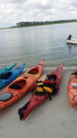 Savannah Canoe and Kayak : 20150718_083221_large.jpg