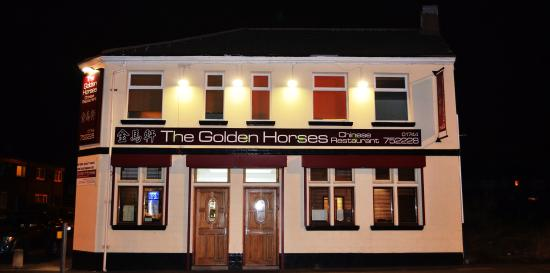 ‪The Golden Horses‬