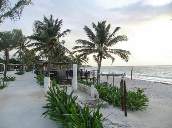 Hotel Akumal Caribe Tripadvisor