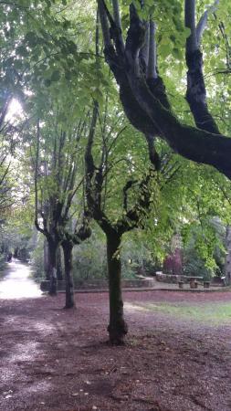 Fuenteheridos, İspanya: Villa Onuba