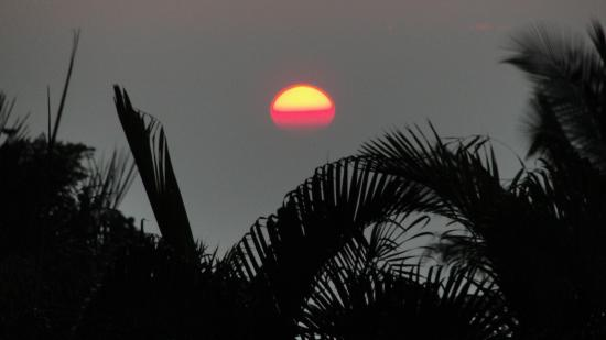 Areca Palms Estate Bed and Breakfast: Amazing Sunset