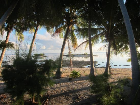 Tikehau Bed and Breakfast: vue du bungalow
