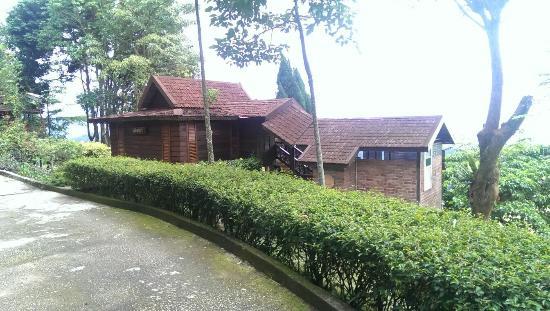 Malihom Private Estate: IMG-20151118-WA0007_large.jpg