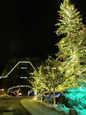 Lodge at Whitefish Lake: Christmas Lights at the Main Lodge entrance