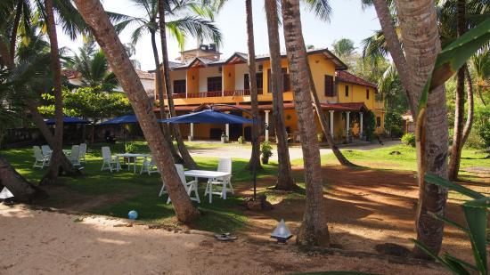 Crazy Coconut Villa