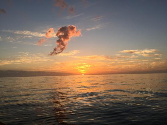 Anna Maria Sailing Adventures: photo0.jpg
