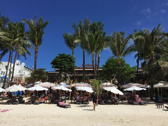 Red Coconut Beach Hotel: Red coconut