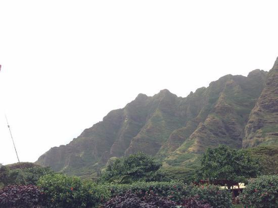 Discover Hawaii Tours: Oahu View
