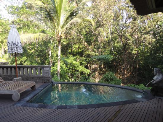 Private pool in villa picture of the kayon resort ubud for Garden pool villa ubud village resort