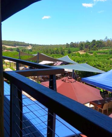 Pickering Brook, Australia: terrace view