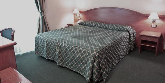 Hotel Amadeus : room