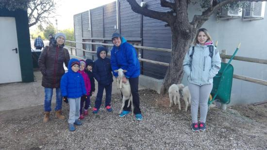 Arnes, Spagna: IMG_20151227_100202_large.jpg