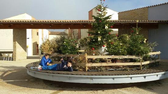 Arnes, Spagna: IMG-20151226-WA0003_large.jpg
