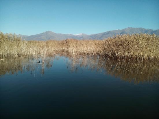 Agios Achillios island: The small Prespa lake