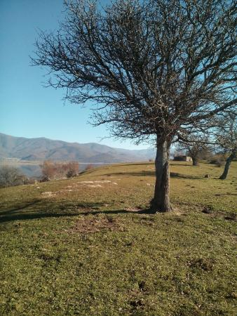 Agios Achillios island: Beautiful scenery