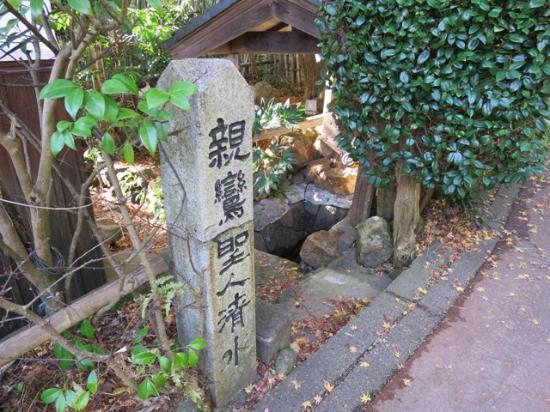 Shinranshonin Shimizu