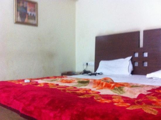 Hotel Neelkanth Panshikura Photo