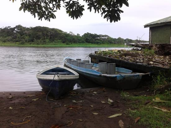 Tortuguero, Kostaryka: getlstd_property_photo