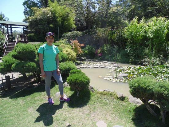En el jard n japon s y zool gico metropolitano photo de for Jardin japones de santiago