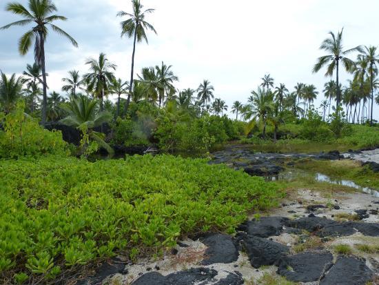 Honaunau, Χαβάη: der Park