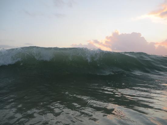 Dar Es Salaam Region, แทนซาเนีย: coco beach