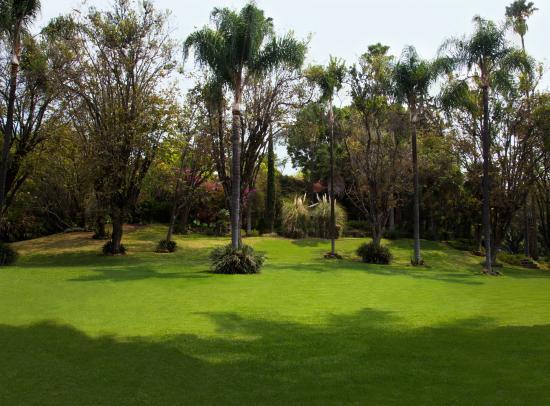 Racquet club jard n fotograf a de hotel racquet Jardin villa serrano cuernavaca